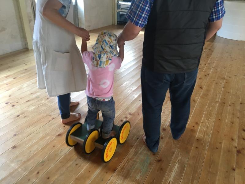 【口コミ】ペダロトレーニングの体験談。大人も子ども楽しめる運動遊具。
